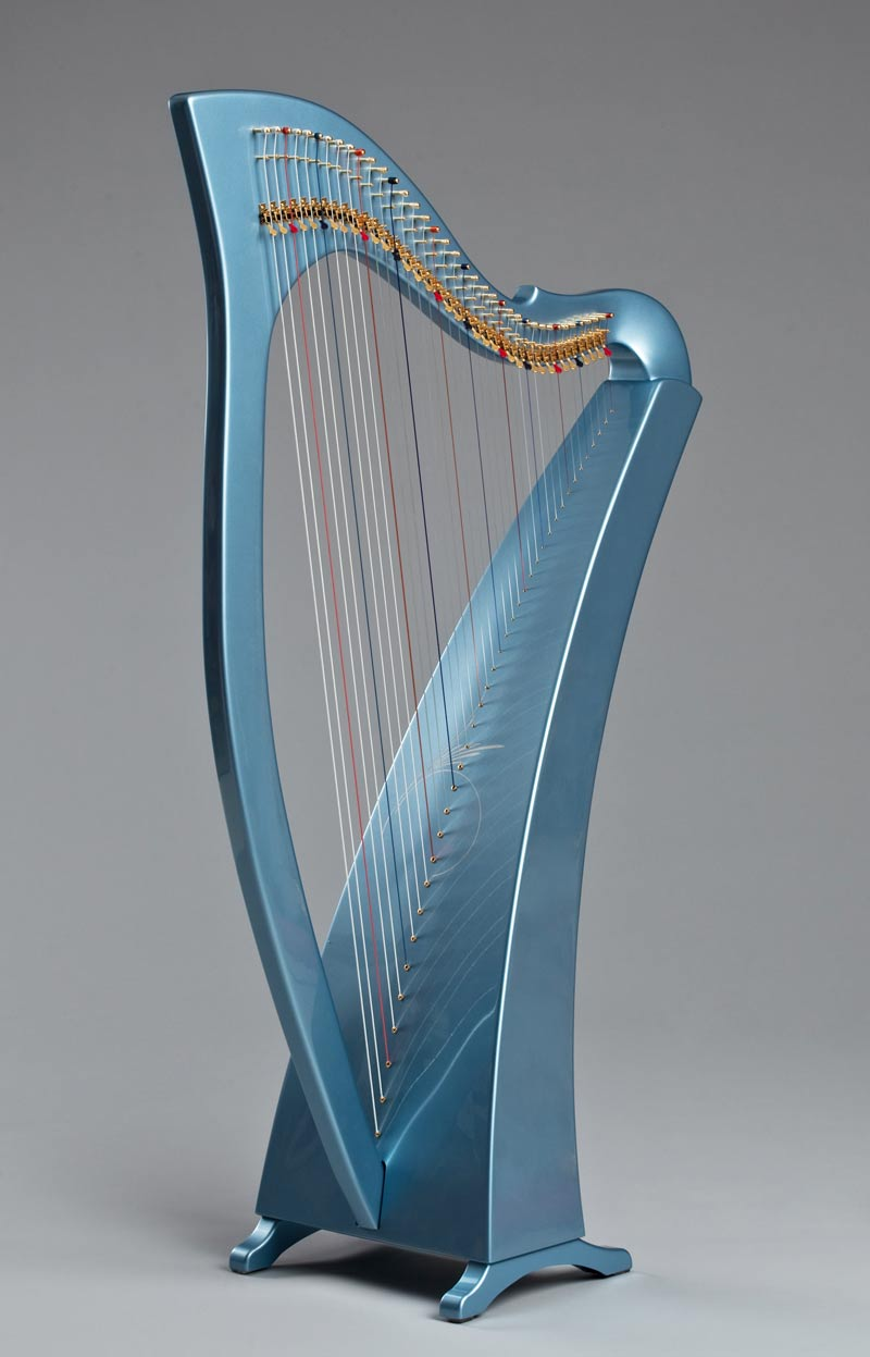 Learn to play the harp book